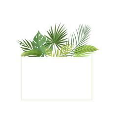 Tropical rainforest foliage border poster vector