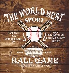 baseball the world sport vector image