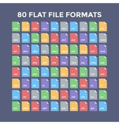 File Formats Icons vector