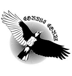 flying mighty black raven crow raven in flight vector image