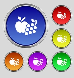 Fruits web icons sign Round symbol on bright vector image