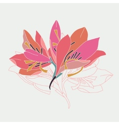 lily flowers vector image