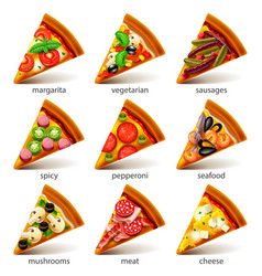 Pizza slices icons set vector