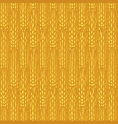 Seamless pattern with realistic yellow corn cobs vector