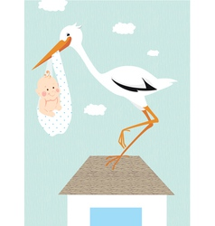 Stork and newborn baon roof vector
