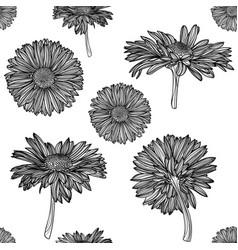 seamless monochrome chamomile pattern vector image