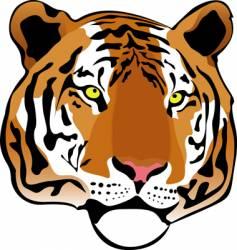 Siberian tiger vector image vector image