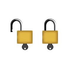 Lock and key vector image