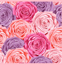 beautiful roses seamless vector image