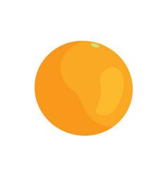 big orange at supermarket vector image
