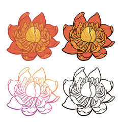 cartoon flower color and black and white version vector image