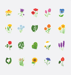 Collection most beautiful flowers vector