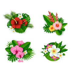 floral tropical composition set isolated vector image