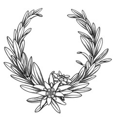 graphic edelweiss wreath isolated on white vector image