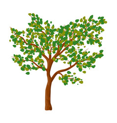 green tree isolated symbol icon design vector image