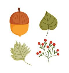 Happy thanksgiving day autumn acorn leaf foliage vector