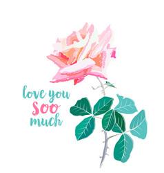 pink rose watercolor love you soo vector image
