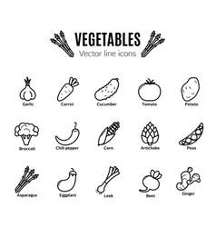 Vegetables icon set vegan natural bio pictograms vector