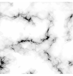 white grey black marble stone background vector image