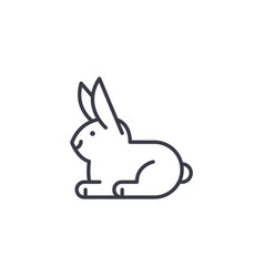 white rabbit line icon sign vector image