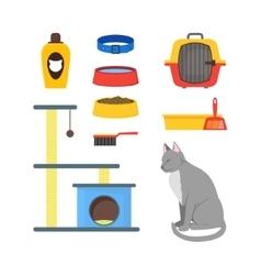 Cartoon Cat Equipment Set vector image vector image