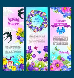 spring holidays greeting flowers banners vector image vector image