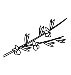 Olive branch icon outline style vector