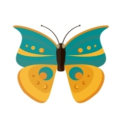 Colored cartoon Cabbage butterfly isolated vector