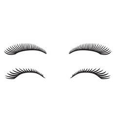 Eyelashes design vector