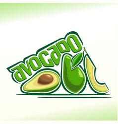 avocado fruits still life vector image vector image