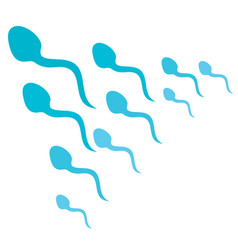 human sperms attack vector image