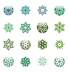 leaves circle ecology floral design vector image