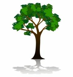 tree illustration vector image vector image
