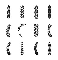 wheat ears icons oat and wheat grains vector image vector image