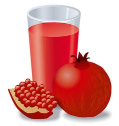 Fresh pomegranates juice vector