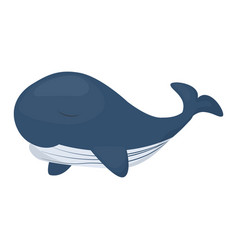Humpback whale character isolated white background vector