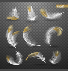 Set of isolated gold falling white fluffy twirled vector
