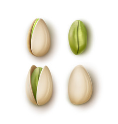 Set of pistachio nuts vector