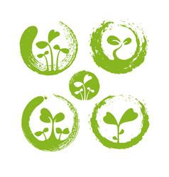 Zen microgreens healthy nutrition logo set local vector