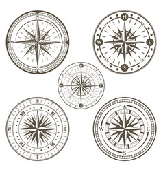 marine compass line art set vector image vector image