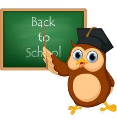 owl cartoon with chalkboard vector image