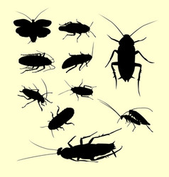 Cockroach insect animal silhouette vector