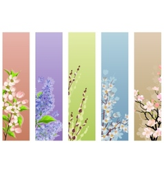collection of floral banners vector image