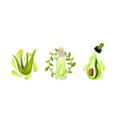 Cosmetic oil with aloe vera and avocado in jar vector