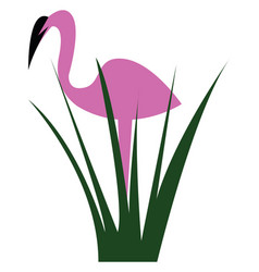 flamingo bird standing behind the bush or color vector image