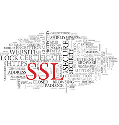 ssl word cloud concept vector image