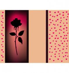 black rose vector image