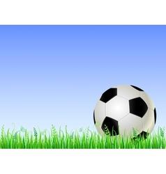 Soccer ball on green grass vector image vector image