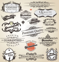 premium quality and satisfaction guarantee vintage vector image vector image