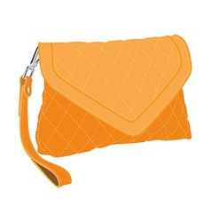 Clutch bag vector